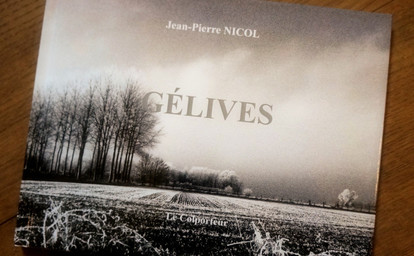 Gélives / Jean-Pierre Nicol | Nicol, Jean-Pierre. Auteur