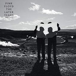 The best of the later years 1987-2019 / Pink Floyd    Pink Floyd