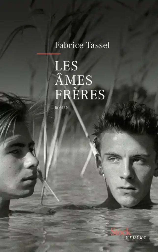 Les âmes frères / Fabrice Tassel  