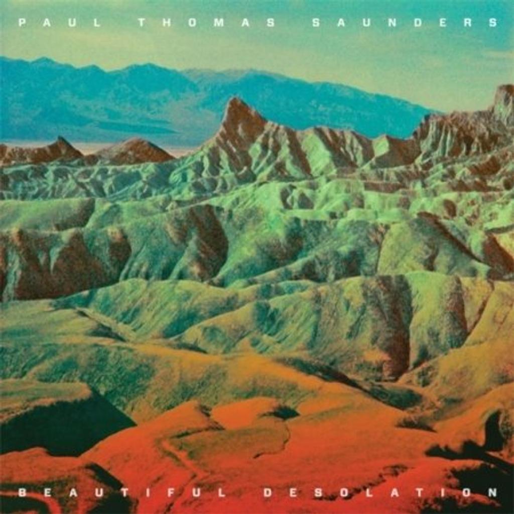 Beautiful Desolation / Paul Thomas Saunders   Saunders , Paul Thomas